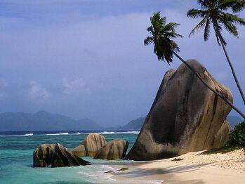 Palm_beach_with_rocks_800