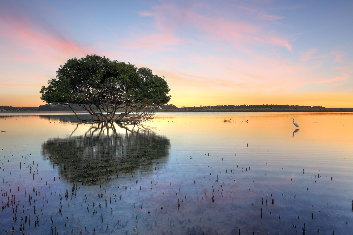 Lake-Kissimmee.jpg